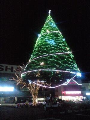 駅前のモミの木も電飾・・・
