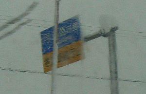 只見線と並行する国道252号線は冬期通行止