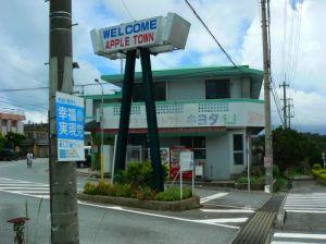 アップルタウン(辺野古)